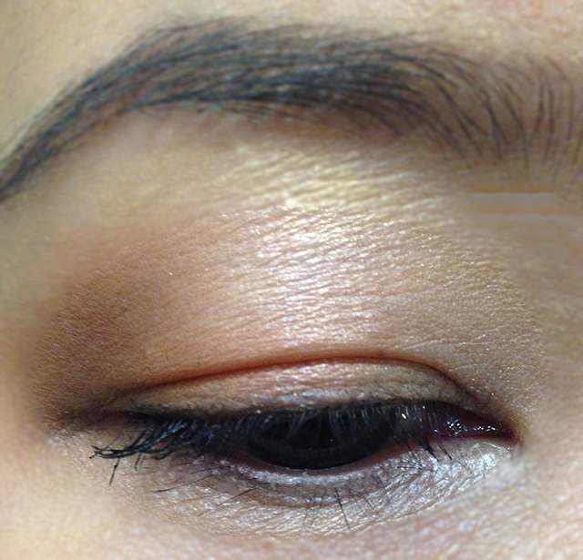 Dior Trafalgar 5 Couleurs Eyeshadow Palette EOTD 2