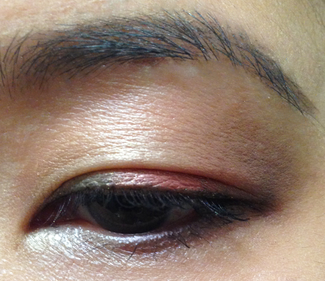 Dior Trafalgar 5 Couleurs Eyeshadow Palette EOTD 3