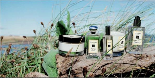 Jo Malone Wood Sage Sea Salt Cologne